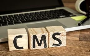 企業のホームページにCMSは必須?導入のメリット・デメリットと選ぶときのコツ